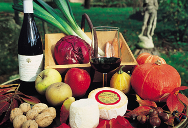 Burgundy Food and Wine