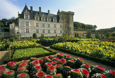 Castle and Gardens of Villandry
