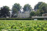 Medoc Full Day Wine Tour