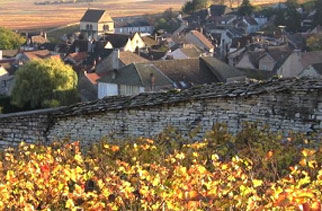 Burgundy Wine Tour by France Cruises